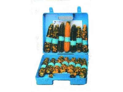 Maïskolven, biokit 1, in koffer
